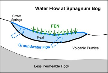 Diagram of water flow at Sphagnun Bog