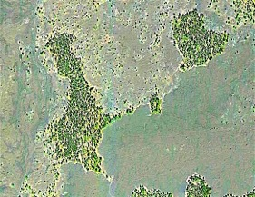 Aerial Photo of Kipukas